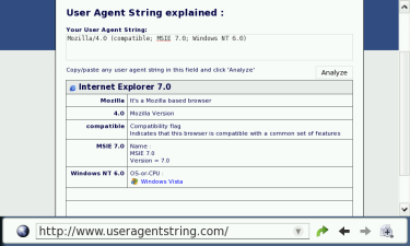 MicroB as Internet Explorer 7.0